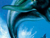 "Kickstarter for ""The Next Ecco the Dolphin Adventure Game"" Begins"
