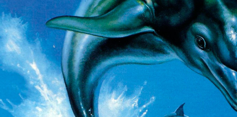 "Kickstarter for ""The Next Ecco the Dolphin Adventure Game"" Begins"