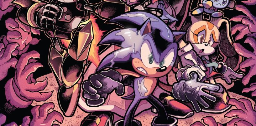 IDW Sonic the Hedgehog Issue #18 Review